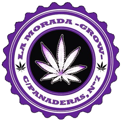 la morada grow shop palencia